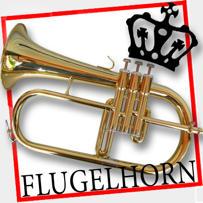 Pro-GOLD-Sterling-Bb-FLUGEL-HORN-With-Case-BRAND-NEW-12-Month-Warranty
